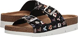 BOBS from SKECHERS Bobs Bohemian - Canine