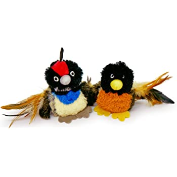 Pet Craft Supply Co. Batty Bird & Quirky Quail Funny Cuddling Chasing Irresistible Stimulating Soft Plush Boredom Relief Interactive Catnip Filled Cat Toy with Realistic Feathers 2 Pack