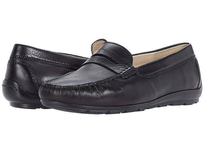 ara  Ashland (Black Gauchosoft) Womens Shoes