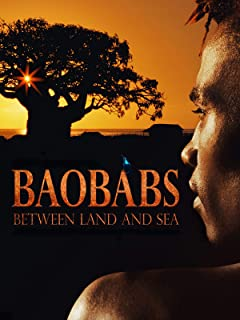Baobabs: Between Land and Sea