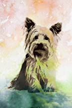 Dogs Yorkshire Terrier Painting Color Background Cubicle Locker Mini Art Poster 8x12