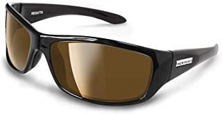 polarized sunglasses with reading lenses
