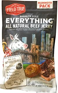 Field Trip, Brooklyn Style Everything, All Natural Beef Jerky, 16 ounces