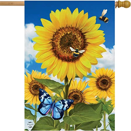 """Briarwood Lane Floral Welcome Butterflies House Flag 28/"""" X 40/"""""""