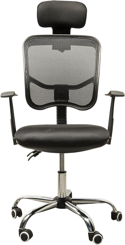 HomCom A2-0094 Adjustable High Back Mesh Office Chair Swivel Computer Desk Seat with Headrest, Black