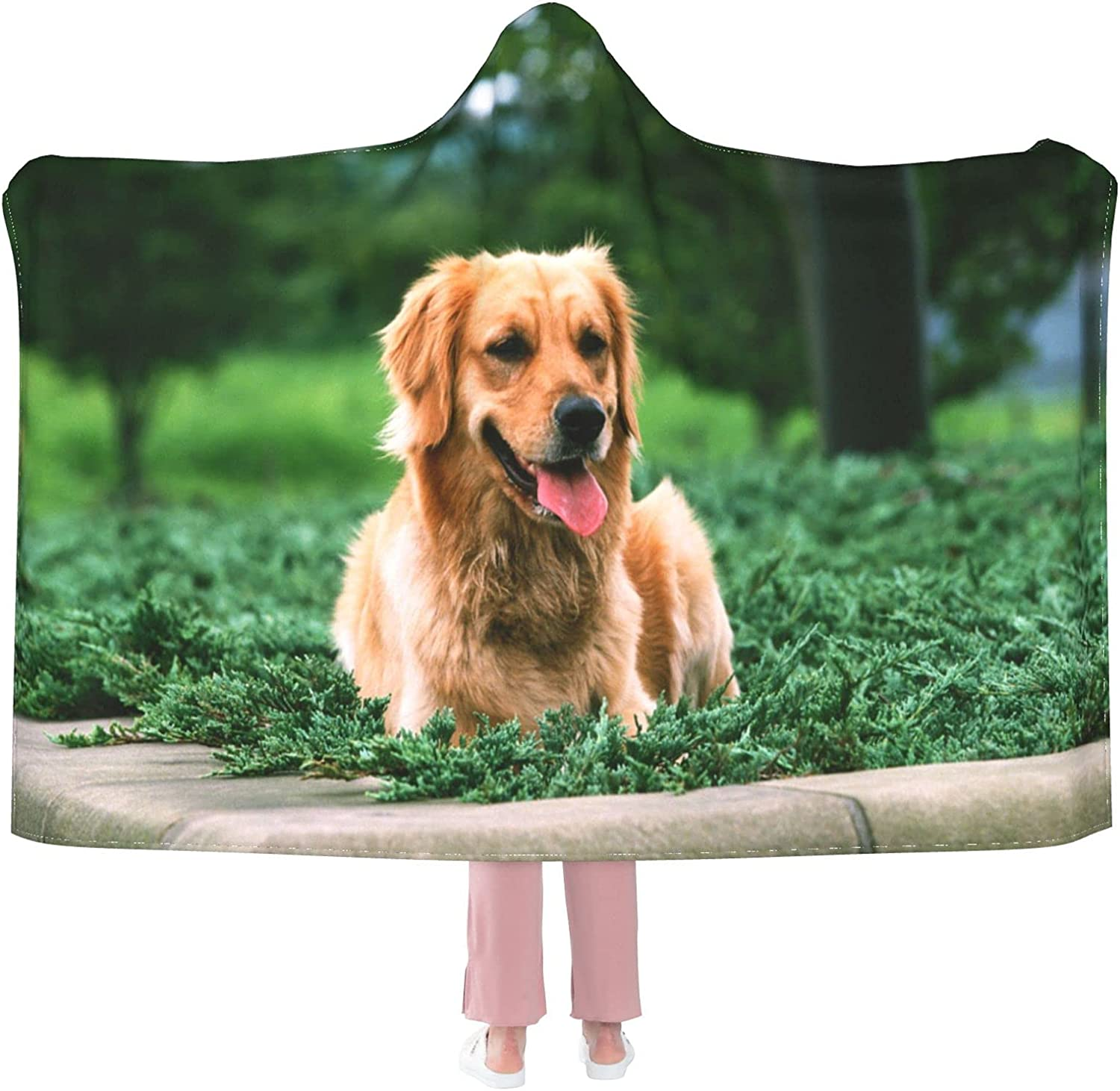 Liner Dog Golden Animer and price revision Retriever Blanket Ranking TOP10 Flannel Hoo Wearable