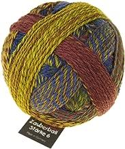 Schoppel-Wolle Zauberball Starke 6