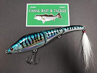 Canal Magic Swimmer Blue Mackerel 9