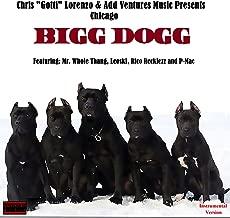 Bigg Dogg - Chicago