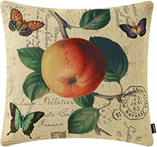 TRENDIN Throw Pillow Cover 18x18 Inch Vintage Fruit Apple and Butterfly Cushion Case for Sofa Couch Home Decor Square Fren...