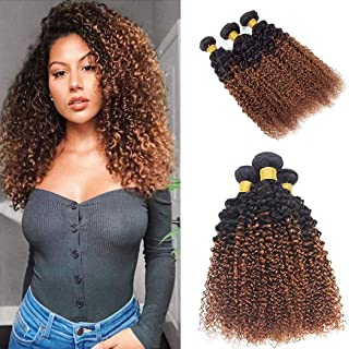 Ombre Human Hair 3 Bundles Brown Kinky Curly Virgin Hair T1B/30 Two-tone 8A Grade Soft Brazilian 100% Human Hair Extensions (12