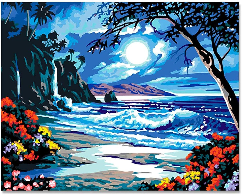DIY Malen Nach Zahlen Zahlen Zahlen Für Erwachsene Seaside Moon Für Kinder Alter 8 9 40x50cm with Combination Frame B07PRCWW6C | Elegantes und robustes Menü  6e2434