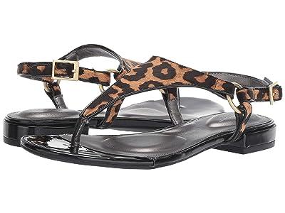 Rockport Total Motion Zosia Thong (Tan Leopard) Women