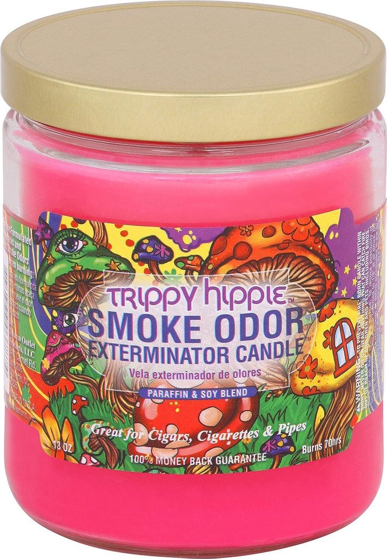 Smoke Odor Exterminator Duftkerze im Glas, 313 g