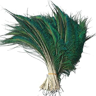Sowder Natural Peacock Sword Feathers 10-15 Inches for Wedding Home Decoration Pcak of 50