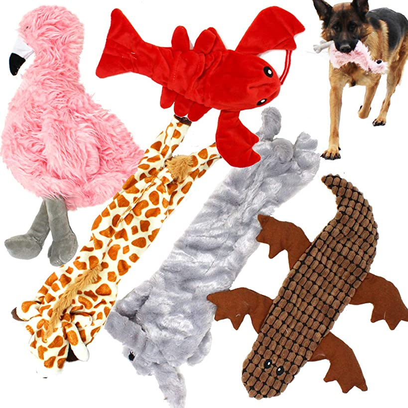 Jalousie 5 Pack Dog Squeaky Toys No Stuffing Dog Plush Toy for Small Medium Large Dog Pets