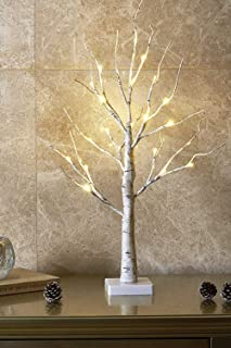 EAMBRITE 2FT 24LT Warm White LED Battery Operated Birch Tree Light Tabletop Tree Light..