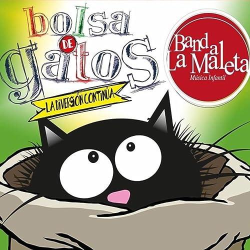 Bolsa de Gatos