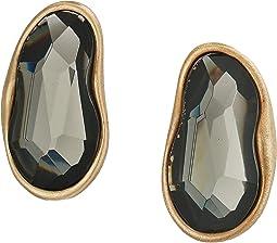 Stone Clip-On Earrings