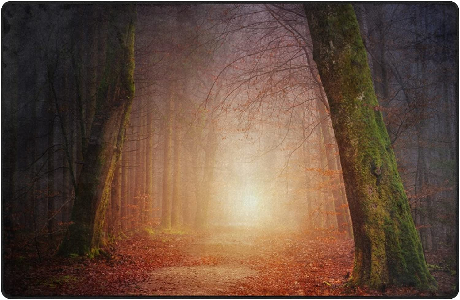 Area Rugs 60 x 39 inch Modern Soft Non-Slip Floor Mats Nature Wood Tree Light Sun Fog Foggy Forest Doormat Carpet for Home Decoration by Josid
