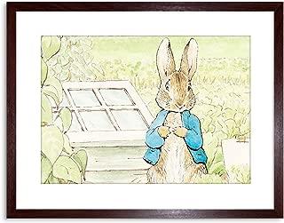 Wee Blue Coo Helen Beatrix Potter Peter Rabbit Framed Art Print F97X10335