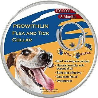 prowithlin Collar Antipulgas Ajustable para Perros Pequeños, Medianos y Grandes - Impermeable   Tratamiento de Pulgas para Perros - 8 Meses de Protección Efectiva - Aceite Esencial Natural
