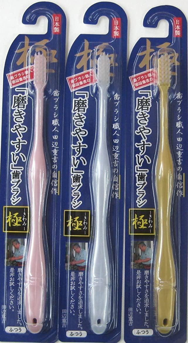 抜け目がない警告聖歌歯ブラシ職人 田辺重吉の磨きやすい歯ブラシ 極 LT-09(12本入)