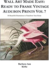 Wall Art Made Easy: Ready to Frame Vintage Audubon Prints Vol 7: 30 Beautiful Illustrations to Transform Your Home