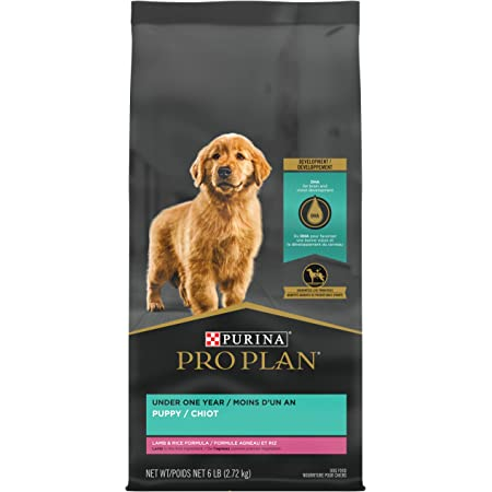 Purina Pro Plan Real Meat, High Protein Dry Puppy Food, Lamb & Rice Formula - 6 lb. Bag