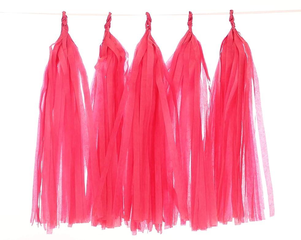 5 Piece Tissue Paper Tassel Garland DIY Kit (hot pink)