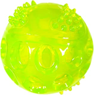 Chase 'n Chomp Durable TPR Squeaking Fetch Ball Dog Toy