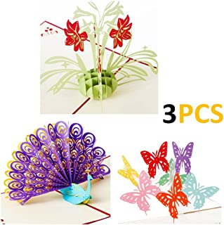 AlleTechPlus 3 Pack Birthday Cards 3D Pop Up Valentine's Day Flower Peacock Butterfly Greeting Card with 3 Envelopes (Daffodil)