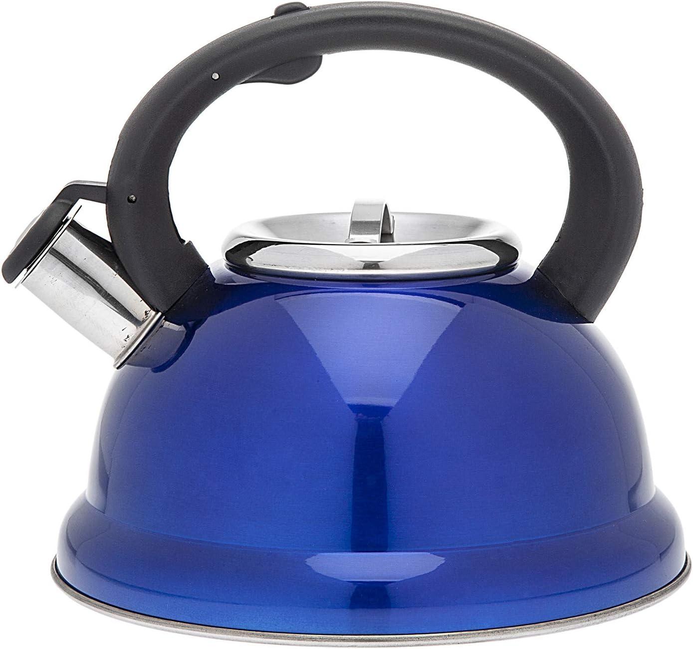 Blue Spasm price Tea Ranking TOP12 Kettle Stainless Steel Liter 2.6 Teapot Whistling -
