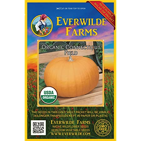 10 Organic Connecticut Field Pumpkin Seeds Everwilde Farms Mylar Seed Packet