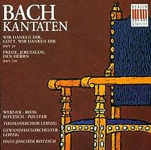 Bach: Cantatas - BWV 29, 119