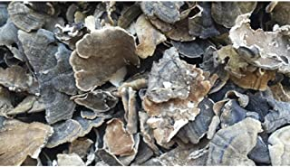 Dried Turkey Tail Mushrooms - 4 Ounce