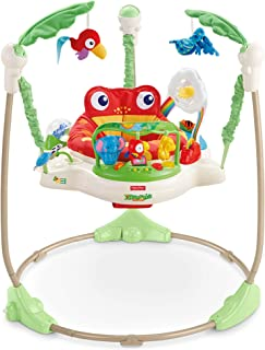 fisher price everything baby jumperoo