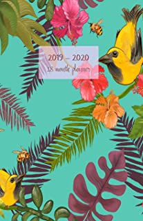 2019-2020 18 month planner: Weekly and monthly planner. Set your Goals and To-Dos. Track your progress with achievements summary. Increase ... Portable. (Flowers and birds cover).