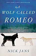 Best wolf named romeo Reviews