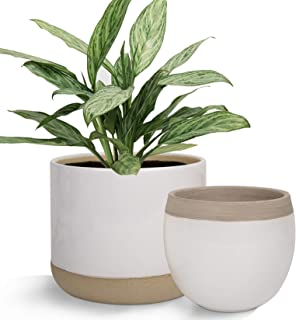 White Ceramic Flower Plant Pots - 6.5 Inch Pack 2 Indoor Planters, Plant Containers with Beige and Cracked Detailing