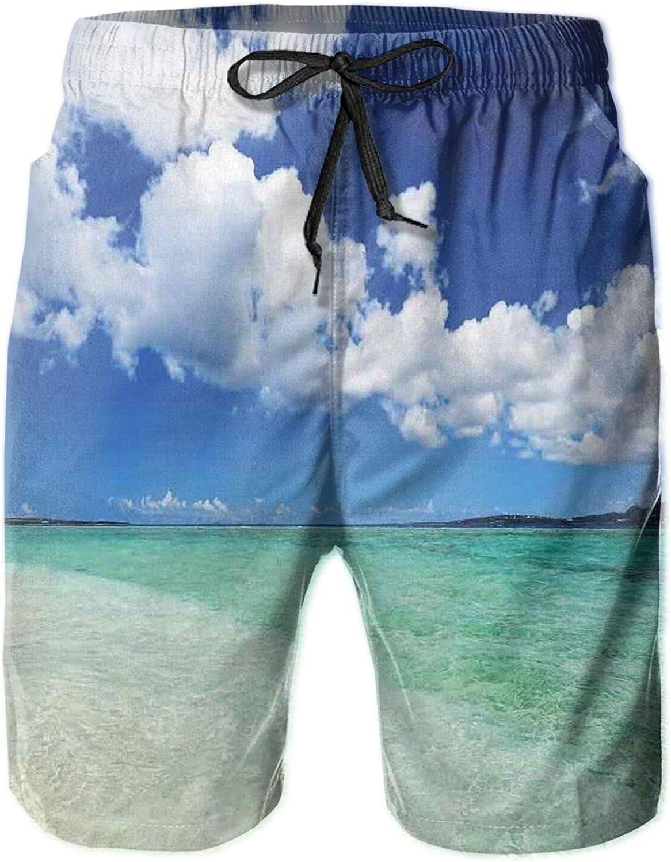 Island Sea Life Wavy Vivid Open Sunny Sea Shore Sand Beach Theme Art Print Image Swimming Trunks for Men Beach Shorts Casual Style,M