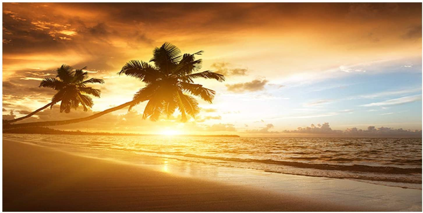Lowest price challenge Coconut Tree Sunsets Sea Beach Landscape Prints and Canv Posters Max 42% OFF