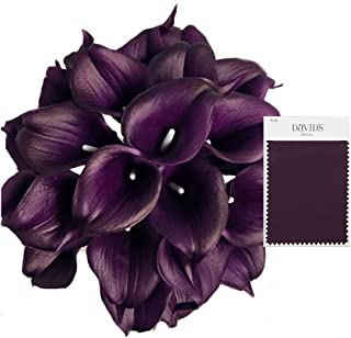 Angel Isabella, LLC 20pc Set of Keepsake Artificial Real Touch Calla Lily with Small Bloom Perfect for Making Bouquet, Boutonniere,Corsage (Plum)