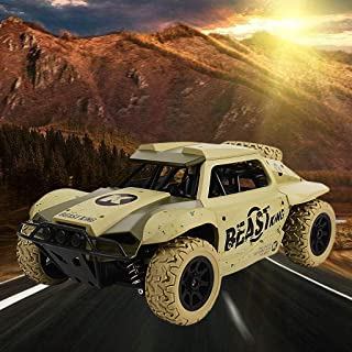 Hisoul Hot 🔥 RC Car Toys for Kids Age 8 1/18 2.4G 4 WD Off Road Remote Control Truck Radio Remote Control Car Racing for ...