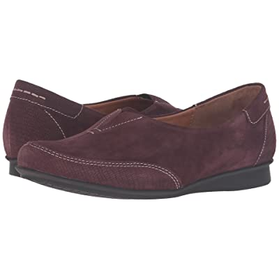 Taos Footwear Marvey (Bordeaux Suede) Women