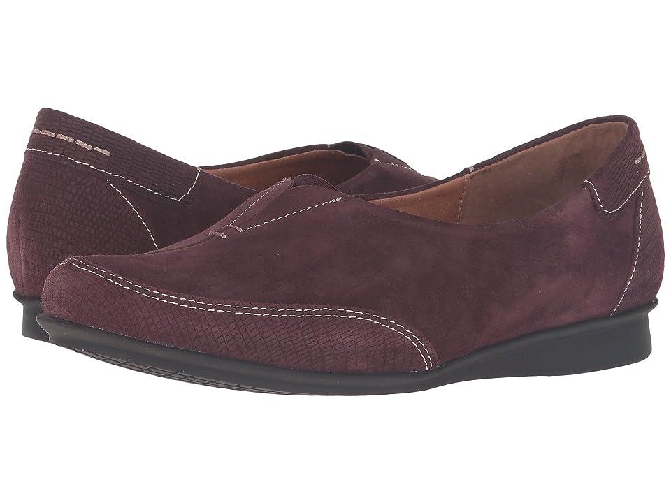 Taos Footwear Marvey (Bordeaux Suede) Women