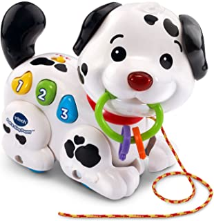 Best VTech Pull and Sing Puppy Reviews