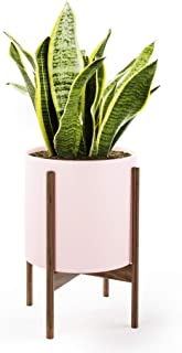 Mid Century Plant Stand with Pot with Drainage - Matte Blush Ceramic Planter with Wood Plant Stand Made of Walnut - 10 inch Planter - Perfect Pot for Plants Indoor - Planter with Stand NOT Adjustable