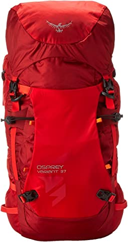 Osprey - Variant 37