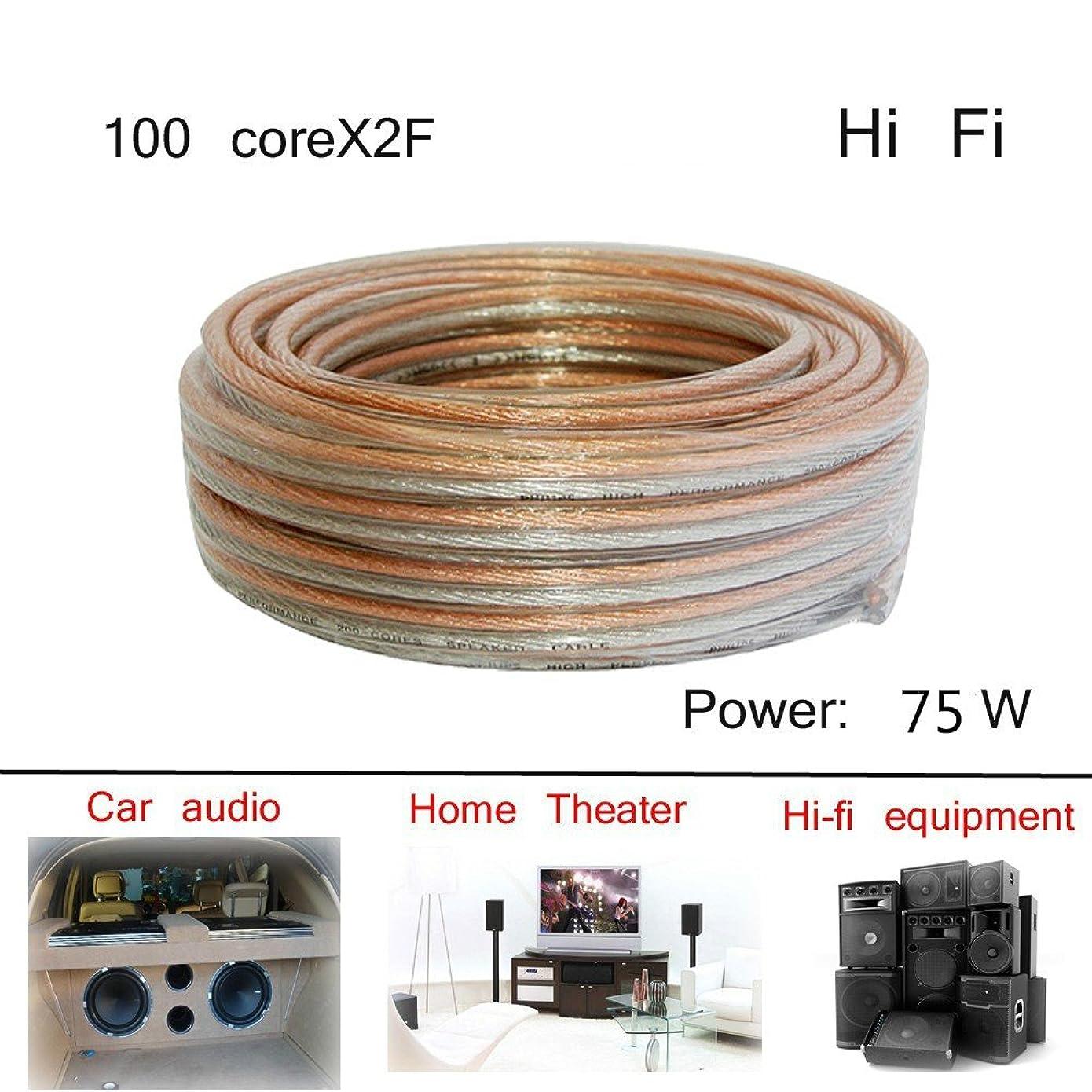 ターゲットハドル振るHigh Fidelityサウンドボックスラインホーン電源アンプ100?core2?F接続line-984inches